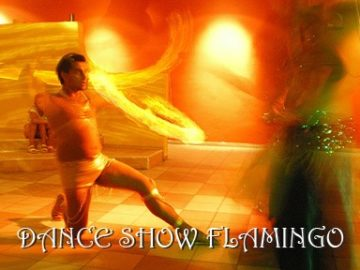 DANCE SHOW FLAMINGO
