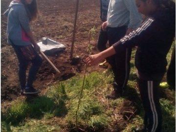 """ПГ Бяла спечелиха в инициативата """"Когато станем 100 000, ще посадим гора"""""""