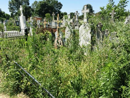 Община Гюргево призова гражданите да почистят гробните места на своите близки