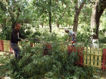 Силна градушка и буря унищожиха реколтата в градините в Ценовско