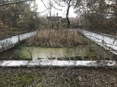 Общински съветник търси отговорност за изоставен парк в село Тетово
