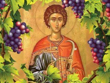 Днес почитаме Св. мъченик Трифон (Трифоновден)