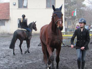 коне тодоровден