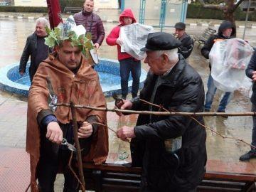 В община Ценово зарязаха лозите за здраве и берекет