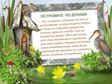 РИОСВ – Русе излъчи победители в конкурсите за Световния ден на влажните зони