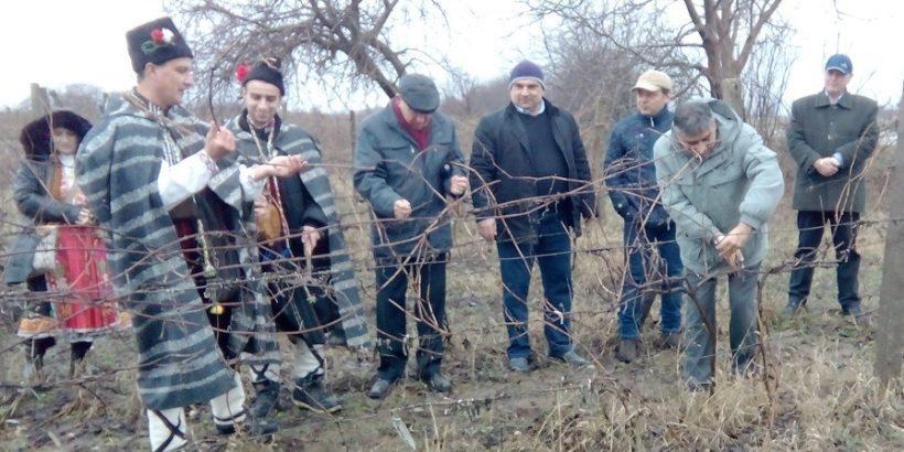 Трифон Зарезан в Тетово бе почетен от много гости