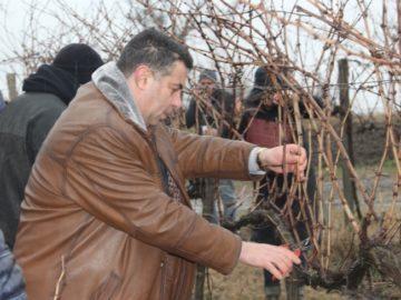 Областният управител в Пиргово за Трифон Зарезан