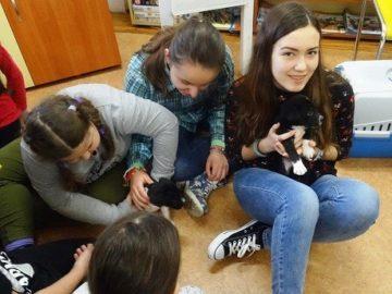кучета деца библиотека игра