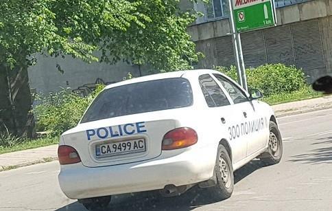 """Автомобил на """"Зоополиция"""" се появи в Русе"""