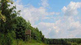 батаклията държавно ловно стопанство