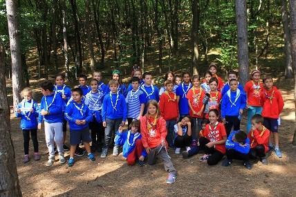 Скаути в гората