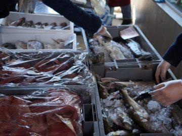риба пазар проверки