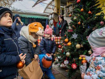 общински пазари русе украсяване на коледна елха