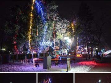 Ученици украсиха цял гюргевски парк, Общината определи победител в конкурса
