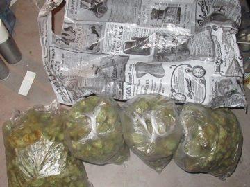 1.3 кг. марихуана, 15 гр. амфетамин, 160 литра алкохол, големи суми задържани при акция срещу наркоразпространители в Русе
