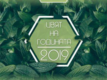 """""""Оргахим"""" избра Органик нюанс на зеленото за цвят на 2019 г."""