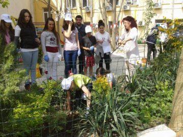 Утре в Русе започва поредица от доброволчески екоинициативи