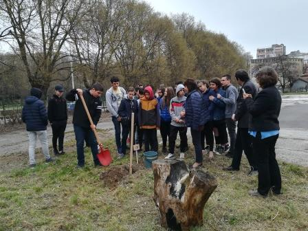 Международният ден на гората бе отбелязан в ПГДВА - Русе