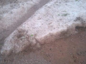 Пороен дъжд и градушка унищожиха продукцията в Долна Студена и Ценово