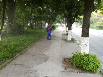 Започна наземното пръскане срещу комари в Гюргево