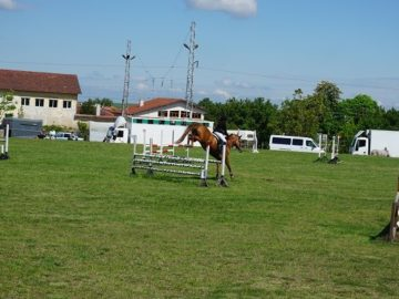 Турнир по конен спорт се проведе в Две могили