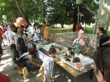 """Благотворителен базар """"Щастливото кутре"""" се състоя днес край Вазата"""