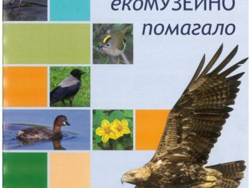 Ново помагало по музейна педагогика издаде РИМ - Русе