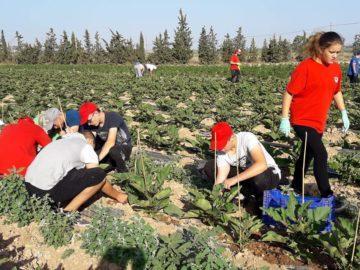 Практиката на ученици от ПГСС - Русе в Сарагоса продължава