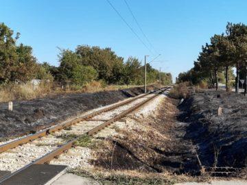 жп линия пожар иваново изгорели треви