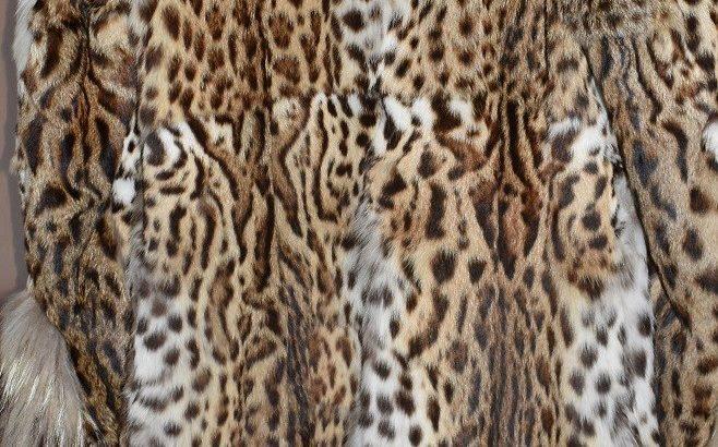 Палта от кожи на защитени видове животни получи РИМ - Русе