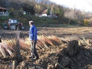 """Приключи работата по обследване на терените за предстоящите лесовъдски дейности в резервата """"Сребърна"""""""