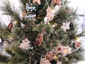 """По какъв начин е изглеждало Коледното дърво в края на 19-и век ще покажат ученици от училище """"Отец Паисий"""""""