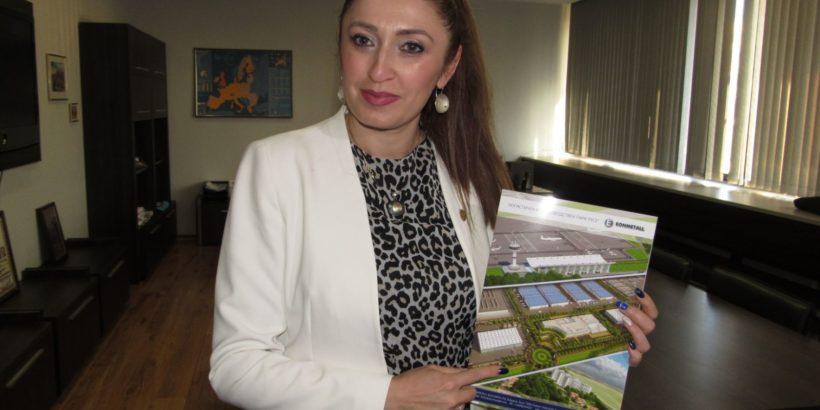 Община Русе ще внесе на сесия инвеститорско предложение за развитието на Летище-Русе