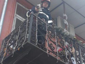 Гюргевските спасители свалиха котка от голяма височина