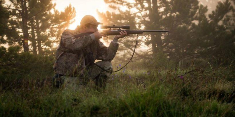 лов ловуване дивеч пушка