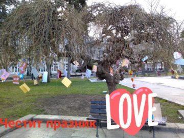 Дървото на влюбените до Паметника на свободата бе украсено за поредна година