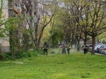 """12 декара в района на Лесопарк Липник са окосили и почистили служителите на ОП """"Паркстрой – Русе''"""