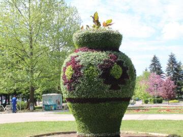 вазата в парка на младежта