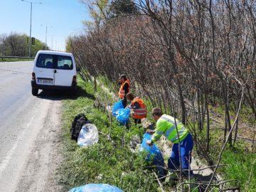 16 тона отпадъци са почистени и извозени в последните дни в 5-километровия участък на път II-21 Русе - Силистра