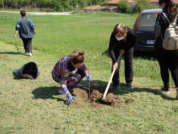 1600 фиданки засадиха в община Ценово