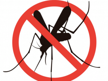 Община Сливо поле пръска срещу комари за втори път