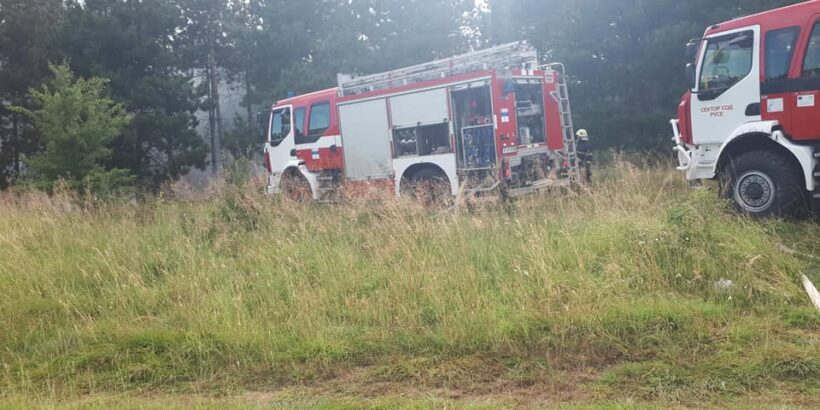 Горски пожар край Басарбово гасиха тази вечер