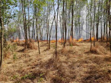Много голям пожар край Бъзън