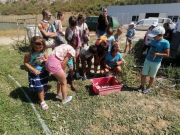 Двемогилските деца пробваха новоизработените си въдици на рибарниците в Острица