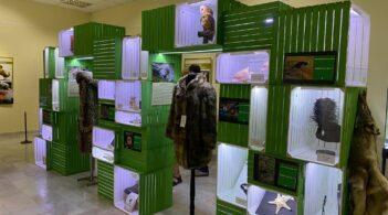 """Изложбата """"Природа в риск. Интерактивна образователна изложба в подкрепа на Световната конвенция за международна търговия с редки и застрашени видове растения и животни"""" гостува в Плевен"""